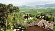 Wine/Olive Farm Visit