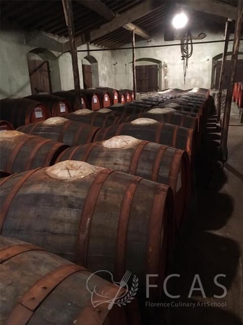 Agritourism (Wine & Olive Farm Visit)