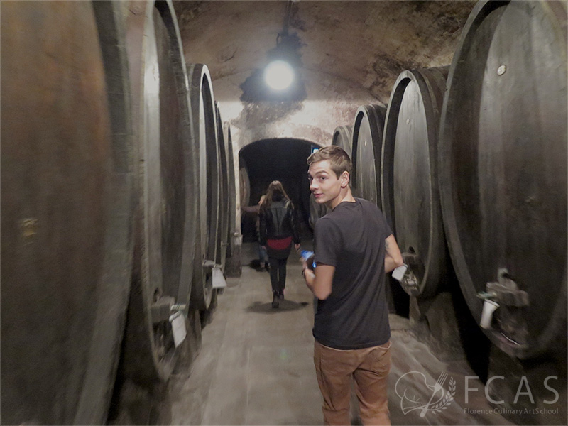 Study Visit to the Wine cellar